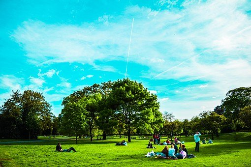 United Kingdom, London, Park, St James' Park, Sky, Wood