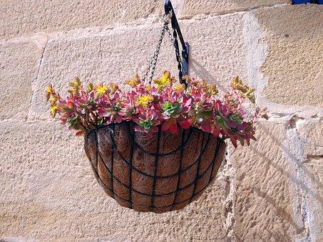 Plant Pot, Flowerpot, Plant, Trim, Pendant, Hang