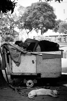 Poor, Person, Dog, Street Photograpy, Black And White