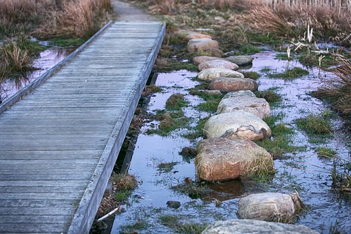 Choice, Bridge, Stepping Stones, Stone, Water, Natural