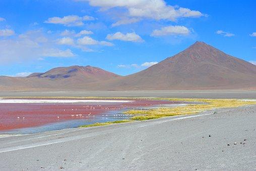 Red Lagoon, Bolivia, Lagoon, Travel, Andes, Altiplano