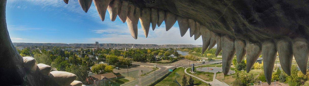 Dinosaur, Drumheller, Observation Deck, Foot, Tooth