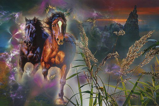 Horses, Galop, Animals, Escape, Horror, Figure