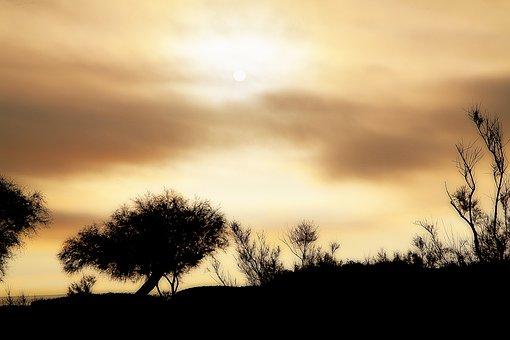 Sky, Sun, Sunrise, Clouds, Color, Contrast, Against Day