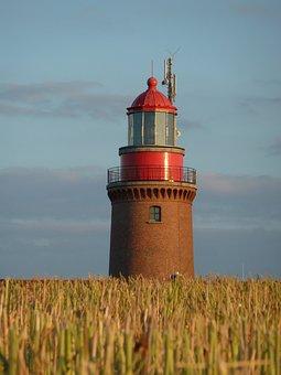 Lighthouse, Bastorf, Cornfield, Summer, Coast