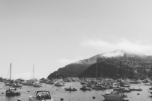 Marina, Boats, Harbor, Port, Water, Sea, Nautical, Bay