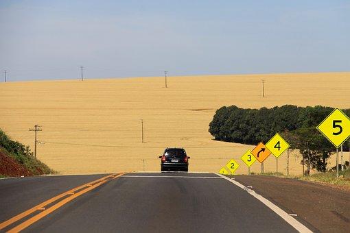 Ride, Car, Road, Path, Asphalt, Paraná, Plantation