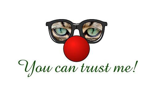 Eyes, Glasses, Cat, Trust, Distrust, Text, Promise