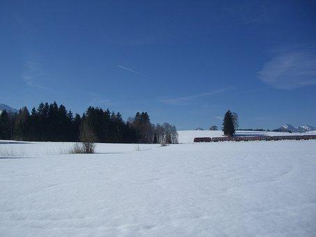 Winter Magic, Train, Winter, Wintry, Snow, Trees