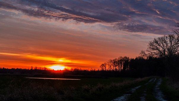 Sunrise, Lane, Nature, Field, Golden, Trail, Autumn