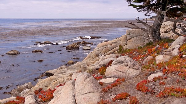 Usa, Hiway 101, Landscape, Nature, Sea, Coast