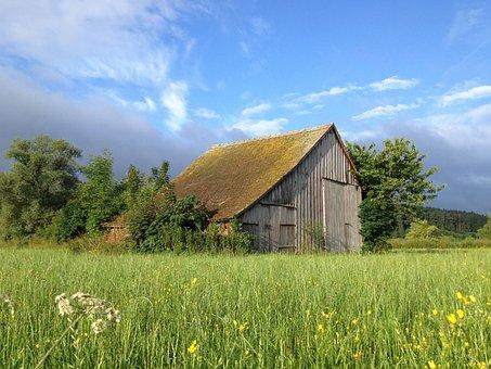 Barn, Field Barn, Summer, Meadow, Clouds, Wood, Moss