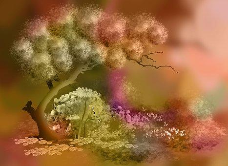 Landscape, Tree, Plant, Bonsei