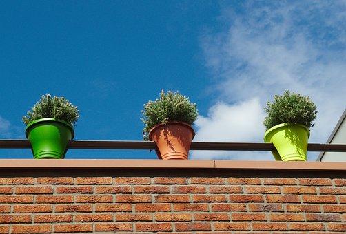 Flowers, Pots, Sky, Clouds, Building, Structure, Brick