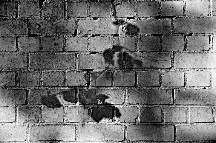 Wall, Brick, Brick Wall, White Brick Wall, White Washed