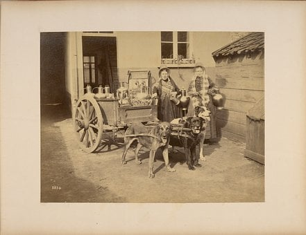 Containers, Drinking Vessels, Carts, Wagons, House