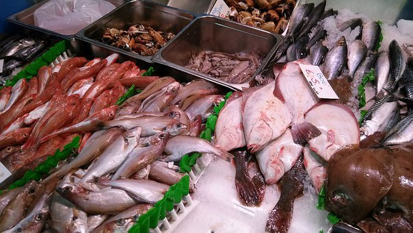 Fish, Sea, Gurnard, Whiting, Octopus, Crabs, Ice