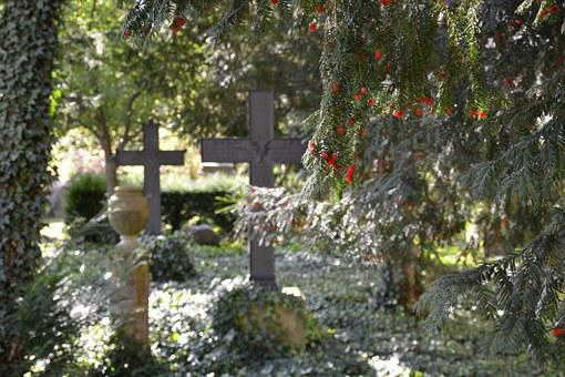 Farewell, Cemetery, Potsdam, Bornstedt, Grave, Hope