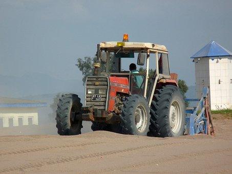 Tractor, Massey Ferguson, Beach, Work, Diesel, Old