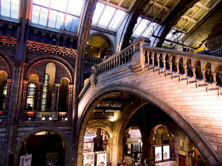 Natural History Museum, London, Architecture, Museum