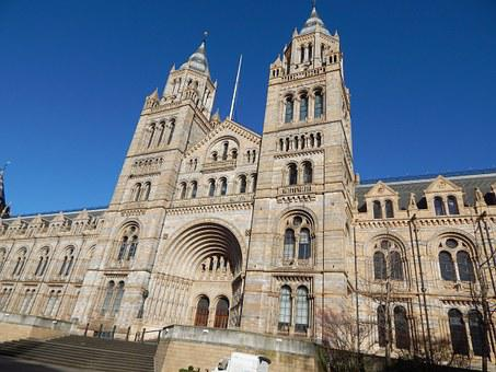 Natural History Museum, Museum, Uk, London