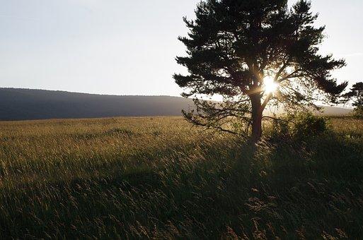 Sunset, Bollenberg, Under Vosges Hill