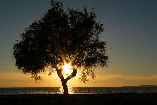 Sun, Setting Sun, Sunset, Water, Evening Sky, Sea