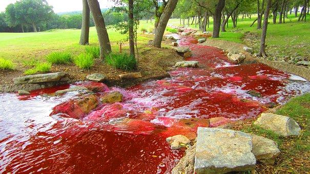 River, Red, Color, Blood River, Darrel, Darrel Stilwell