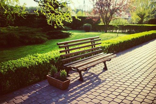 Bench, Garden, Green, Grass, Spring, Evening, Sett