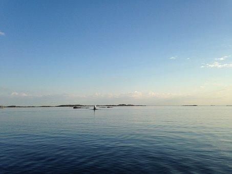 Hönö Klåva, Hönö, Ocean, Sea, Island, Water, Islands