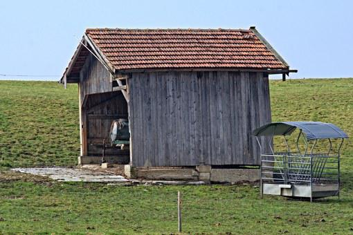 Hut, Barn, Nature, Field, Meadow, Field Barn, Log Cabin