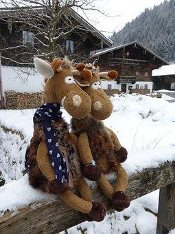 Chiemgau, Bavaria, Plush, Giraffe, Germany, Chiemgauer