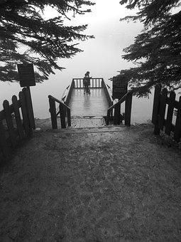 Bolu, Abant, Lake, Tree, Black, White, Landscape