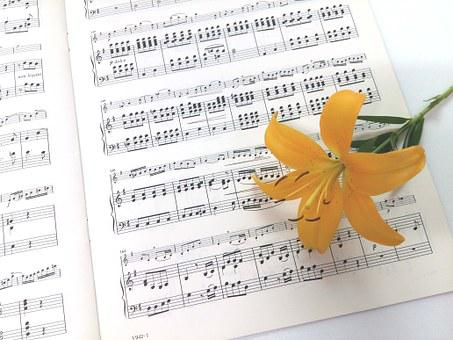 Sheet Music, Yellow Naira, Flowers
