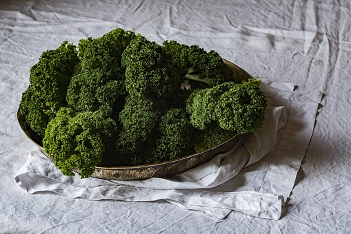 Broccoli, Cloth, Green, Healthy, Stainless Bowl