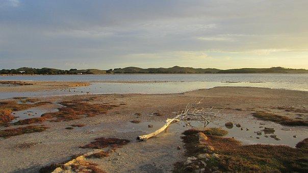 Rotnest Island, Island, Australia, Rottnest, Weathered