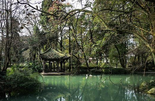 Water, Trees, Branches, Green, Nature, Jade Pavilion