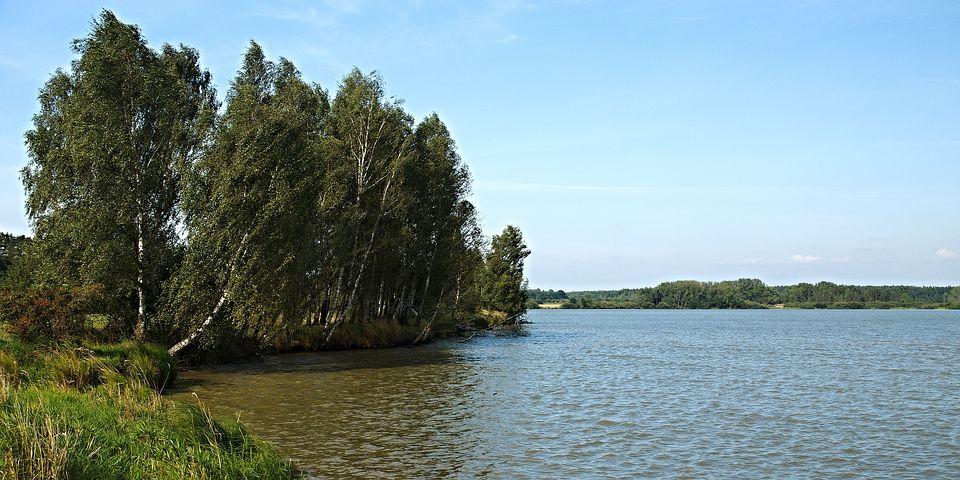 South Bohemia, Trebonsko, Pond, Bank, Water-level