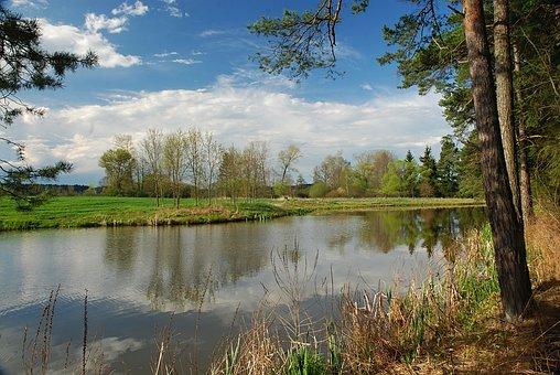 Spring, Landscape, Water-level, Signs Of Spring, Pond