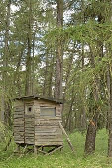Hunting Lodge, Forest, Hunting Seat, Nature