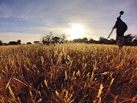 Camera, Clouds, Field, Grass, Hike, Nature, Outdoor