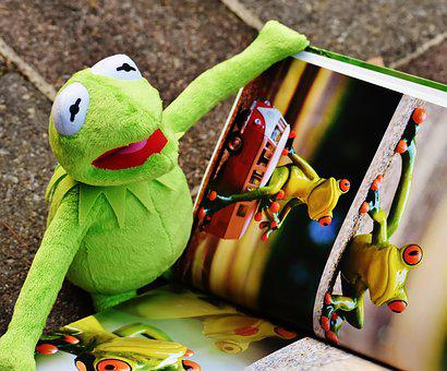 Kermit, Book, Picture Book, To Watch, Frog, Sit, Fig