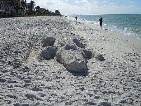 Alligator, Beach, Sand Sculpture, Sand Picture, Art