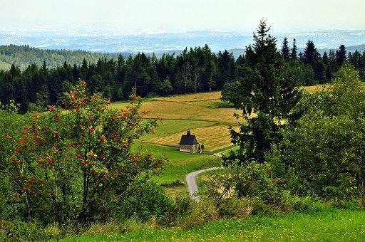 Chapel, Koskowa Mountain, Beskids, Poland, The Silence