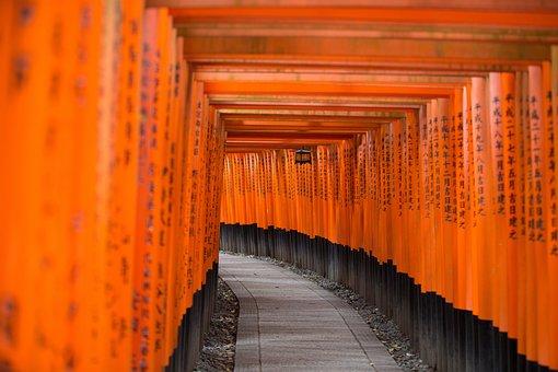 Art, Black, Covered, Hallway, Orange, Pathway, Rocks