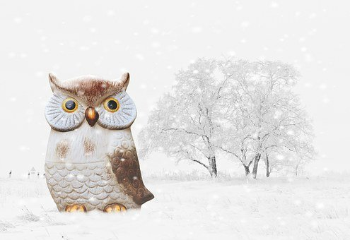 Owl, Winter, Snow, Bird, Funny, Wintry, Fig, Deco