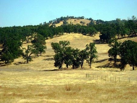 Latrobe, California, Landscape, Hills, Hillside