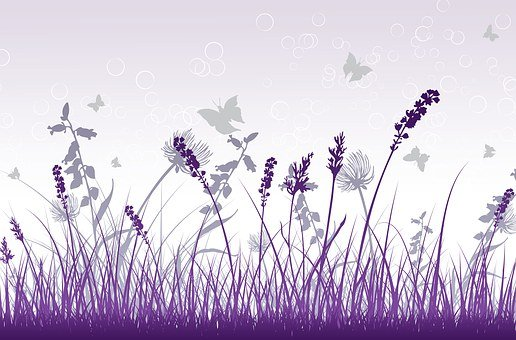Purple, Grey, Decorative, Background, Nosegay, Flower