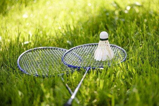 Babington, Game Lounge, Active Holidays, Adopt A Garden
