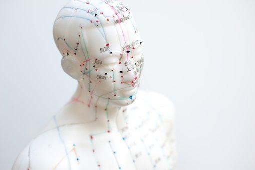 Aiguille, Acupuncture, Agujas Acupuntura, Model